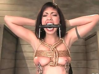 Bdsm, Hardcore, Satine Phoenix,