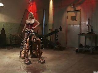 Aiden Starr, Exotique , Fétiche , Lyla Storm, Star Du Porno,