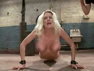 BDSM, Blonde, Hardcore, Pornstar, Riley Evans,