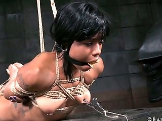 BDSM, Beauty, Big Tits, Black, Bound, Cute, Escort, Hooker, Horny, Rough,
